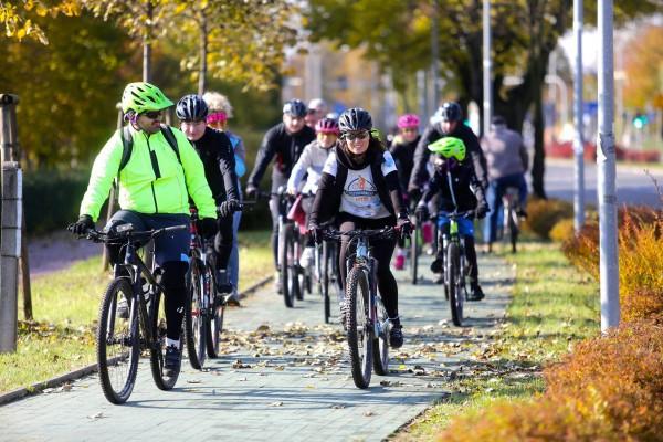 Jeszcze w tym roku powstanie nowa droga rowerowa przy ulicy Legionów