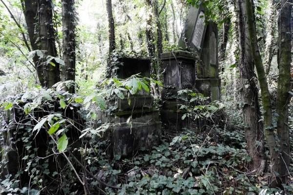 #1 Co warto zobaczyć w Częstochowie?- Cmentarz Żydowski