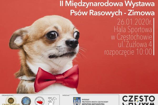 W Hali Sportowej Częstochowa będzie można podziwiać psy rasowe