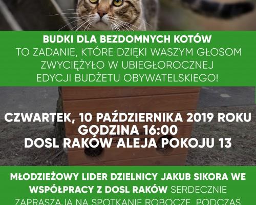 Budki dla bezdomnych kotów, czyli dzielnicowe konsultacje w DOSL Raków